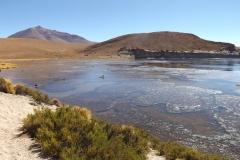 Laguna Negra in the Reserva Nacional de Fauna Andina Eduardo Avaroa.